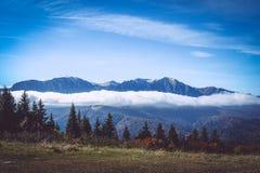 Carpathian& x27; s山风景 库存图片