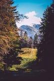 Carpathian's mountains landscape Royalty Free Stock Photo