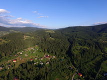 Carpathian skog Arkivbild