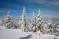 carpathian skogbergvinter Fotografering för Bildbyråer