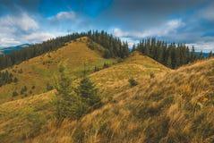 Carpathian slopes Royalty Free Stock Images