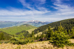 Carpathian spring landscape Royalty Free Stock Photo