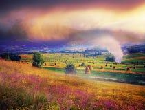 Carpathian Summer Royalty Free Stock Photography