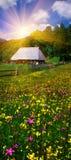 Carpathian Summer Stock Photography