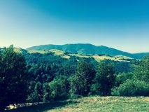 Carpathian Ukraina arkivfoto