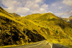Carpathian väg Royaltyfri Fotografi