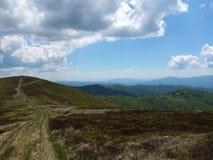 Carpathian vidder Arkivbild