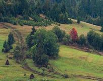 Alps mountain. Alp mountain Royalty Free Stock Photo