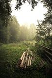 Carpathian village. Dreamy village in Carpathian mountains. The morning mist. Highlands of Ukraine Stock Photography