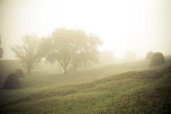 Carpathian village. Dreamy summer landscape. The morning mist. Highlands of Ukraine Royalty Free Stock Photos