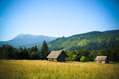 Carpathian village. Far away village in Carpathian mountains at the foot of Goverla mountain Stock Photography