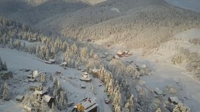 Aerial view of houses among pine trees covered with snow in mountains. Rural landscape in winter at sunrise. Mountain stock video footage