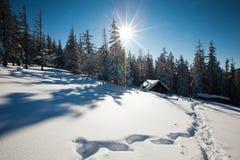Carpathian vinterberg Royaltyfri Fotografi