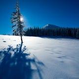 Carpathian vinterberg Arkivbild
