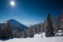 Carpathian vinterberg Arkivfoton