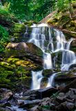 Carpathian waterfall Shypot in the morning. Beautiful nature scenery. popular tourist attraction Stock Image