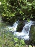 Carpathian waterfall, Yaremche, Carpathian mountains, Ukraine stock photos