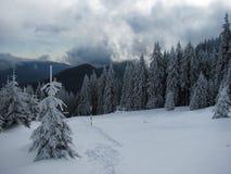 Carpathian winter Stock Photo