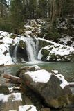 Carpathian winter waterfall Stock Image