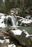 Carpathian winter waterfall Stock Image