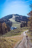 Carpathian's mountains landscape Royalty Free Stock Images