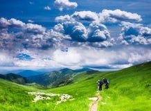 喀尔巴阡山脉的风景 图库摄影