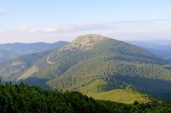 Βουνά Carpathians r Δάσος επάνω υψηλό Θερινή ημέρα στοκ εικόνα με δικαίωμα ελεύθερης χρήσης