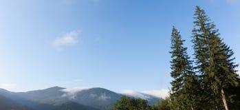 Carpathians δάσος, μπλε ουρανός και βουνά πεύκων φύσης r στοκ εικόνα