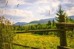 Carpathians στα τέλη του καλοκαιριού Στοκ φωτογραφία με δικαίωμα ελεύθερης χρήσης