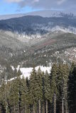 Carpathians το χειμώνα Στοκ Εικόνες
