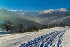 carpathians χειμώνας Στοκ Φωτογραφία