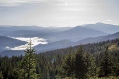 carpathians Fotografie Stock Libere da Diritti