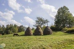 carpathians Immagine Stock Libera da Diritti