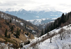 Carpathians Stock Photo