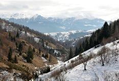 Carpathians Foto de Stock