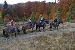 Carpathians Stock Images