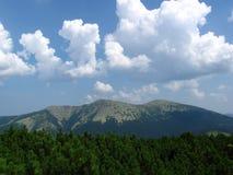 Carpathians Arkivfoton
