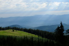 carpathians obrazy royalty free