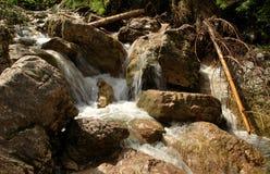 carpathians Royalty-vrije Stock Foto's