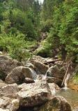carpathians Stock Afbeeldingen