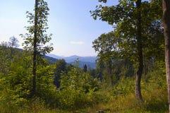 carpathians Στοκ εικόνα με δικαίωμα ελεύθερης χρήσης
