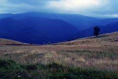 carpathians Стоковые Фото