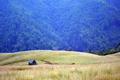 carpathians Стоковое Фото