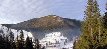 The Carpathians. In winter high snowy Carpathian mountains beckon by their beauty and sublimity Stock Images