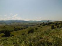carpathians Imagens de Stock