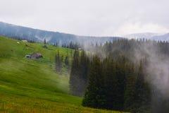 carpathians Imagem de Stock