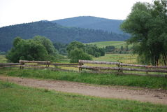 Carpathians. Canicular day. A rural road is in mountains Royalty Free Stock Photo