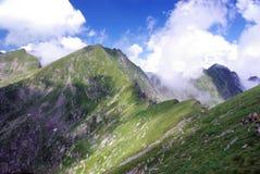Carpathians creast Stock Images