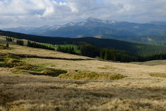 Carpathians. Cuculi meadow. View of the highest mountain of Ukraine Goverlu Stock Image
