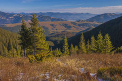 The Carpathians in early spring Royalty Free Stock Image